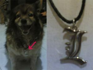 ini gambar kalung L beserta modelnya ^^